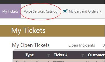 Voice Services Catalog Picture
